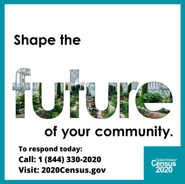 Respond to the Census